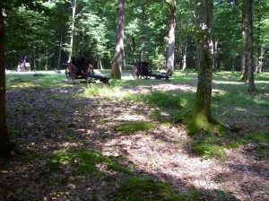 Trenches and artillery pieces in Belleau Wood, made famous by stand of 6th Marines in 1918, France WWI. My father was a Navy hospital corpsman with the regiment in the Dominican Republic before they were transferred to France, and he to Charleston, S.C. 2008/10.