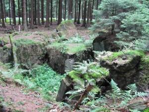 Huertgen Forest, Germany, destroyed German bunker. 2010.